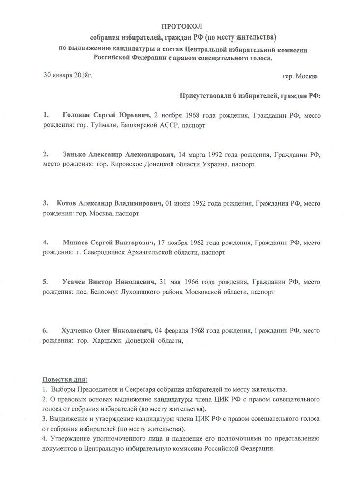 ПРОТОКОЛ ЦИК РФ-1.jpg